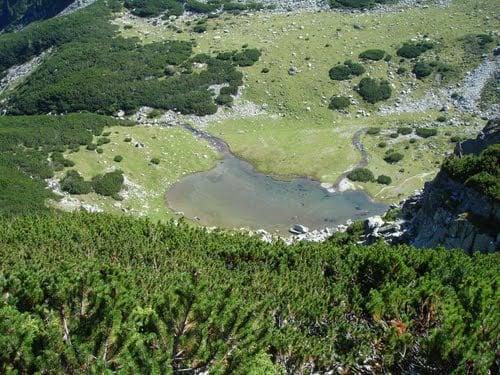 Lacul ciumfu mic