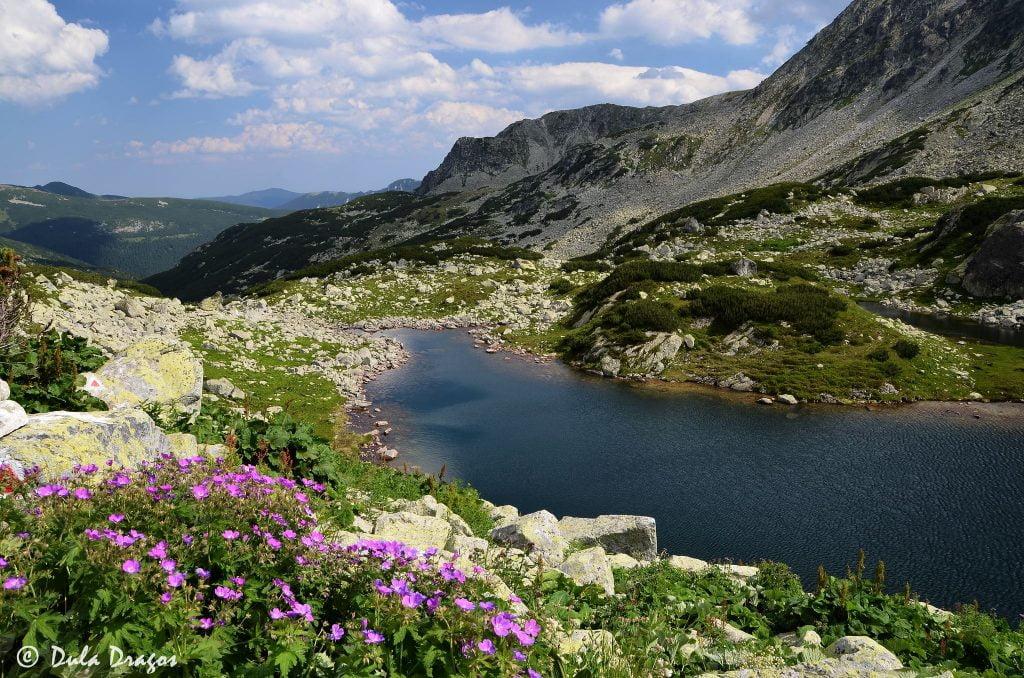 Lacul Viorica Munții Retezat
