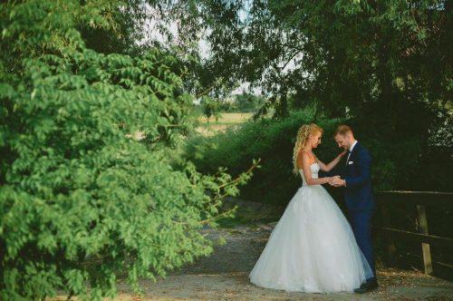 sezonul nunţilor archia